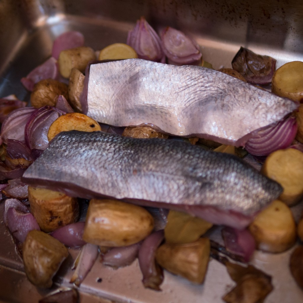 bluefish cooking with roast potatoes