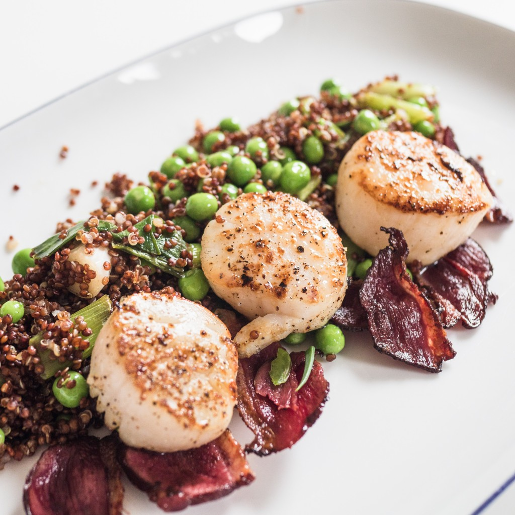 Scallops, duck bacon, peas and Quinoa