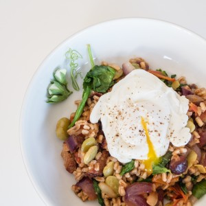 lima beans, smoked bacon, farro